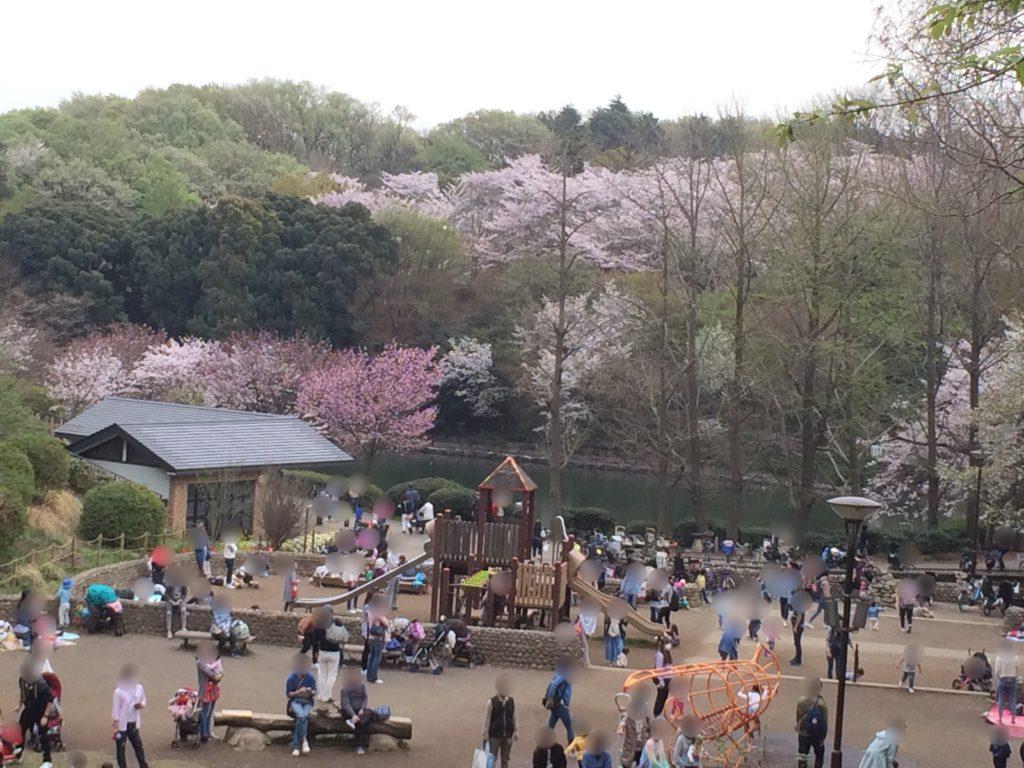 三ッ池公園22