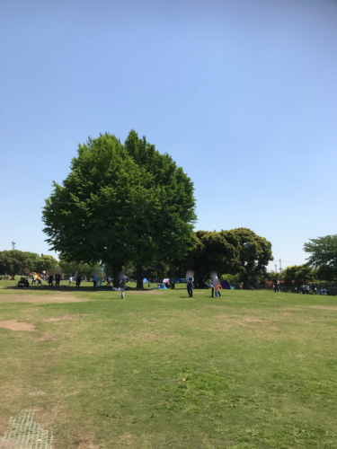 大師公園8