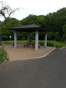 桜ヶ丘公園6