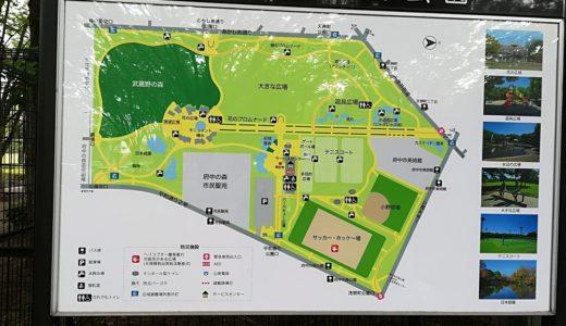 府中の森公園1