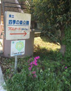 四季の森公園8