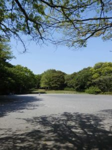 四季の森公園6