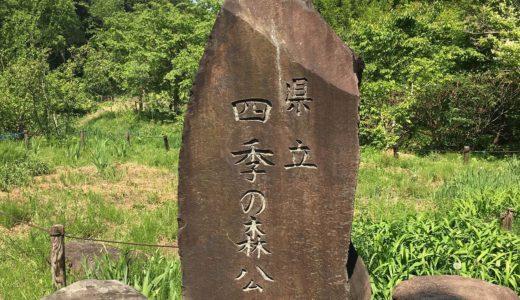 横浜市緑区【県立四季の森公園】遊具(滑り台|水遊び|自然豊かでおすすめ