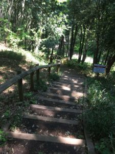 四季の森公園12
