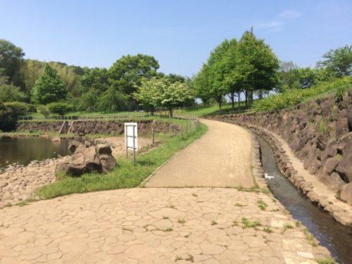 茅ヶ崎里山公園16