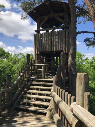 森林公園32