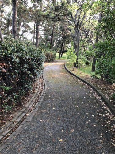 大野お台場公園13