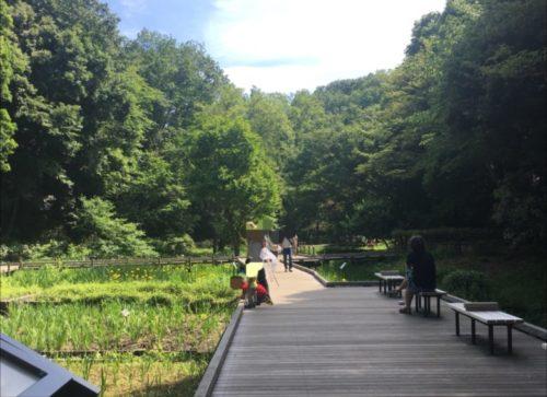 東高根森林公園4