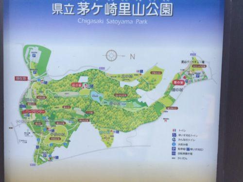 茅ヶ崎里山公園1