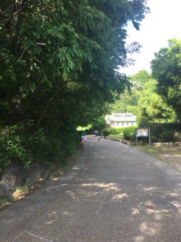 東高根森林公園9