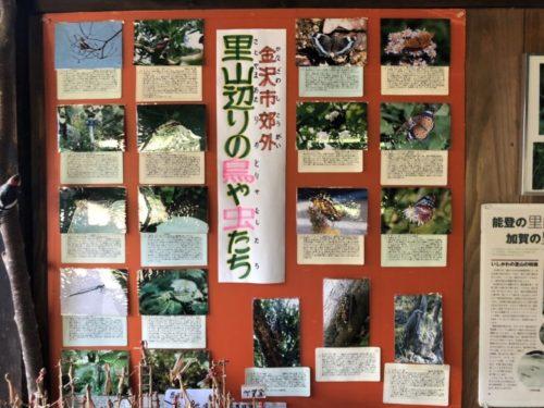 夕日寺県民自然園11