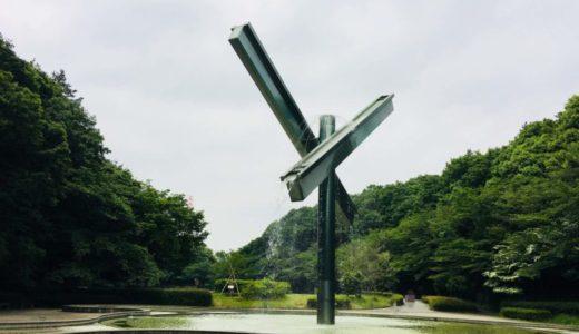町田【芹ヶ谷公園】は桜の名所!大迫力の噴水|水遊び|冒険遊び場がおすすめ♪