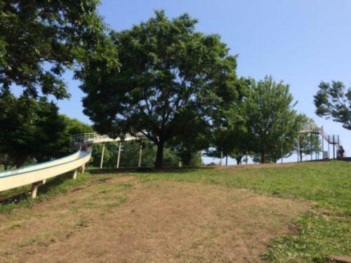 茅ヶ崎里山公園4