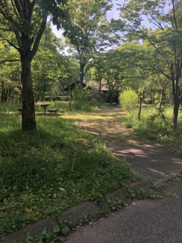 北部公園37