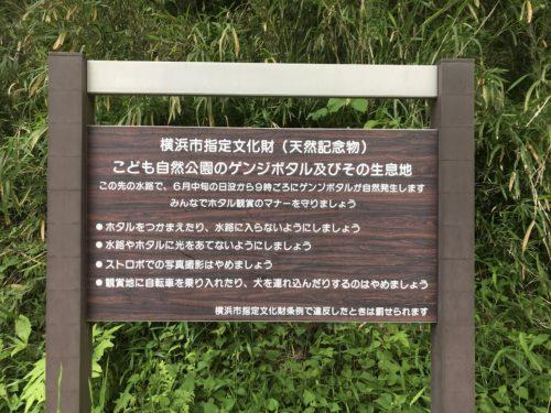 こども自然公園1
