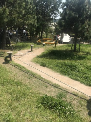 きらら博記念公園5
