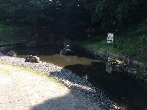 茅ヶ崎里山公園14