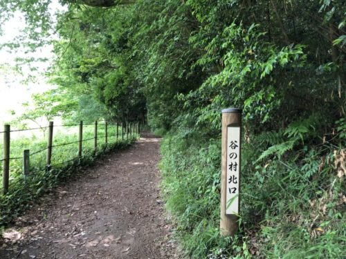 茅ヶ崎里山公園29
