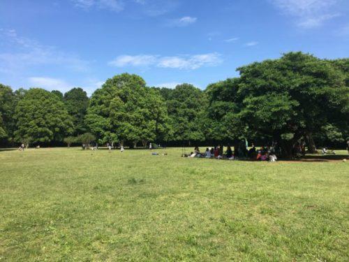 東高根森林公園6