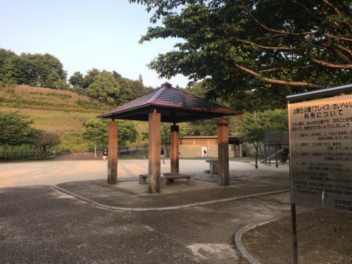 上野の森公園6
