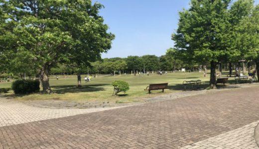 金沢|北部公園|アスレチック遊具にボール遊び♪緑豊かな公園で自然と触れ合おう!!