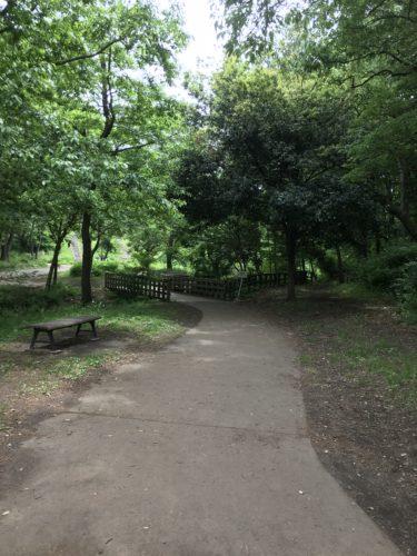 こども自然公園7