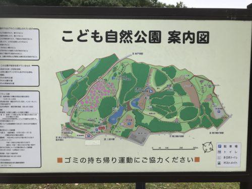 こども自然公園13