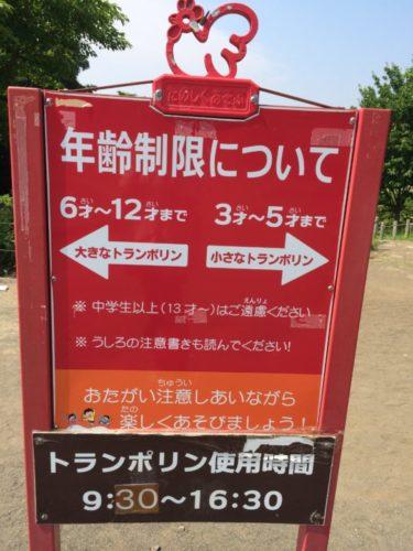 茅ヶ崎里山公園8