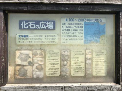 夕日寺県民自然園26