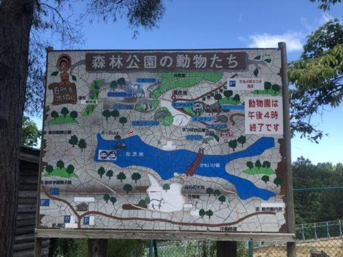 森林公園51