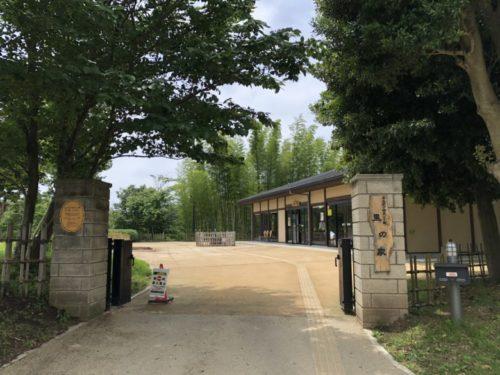 茅ヶ崎里山公園26
