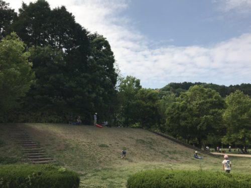 佐野植物公園11