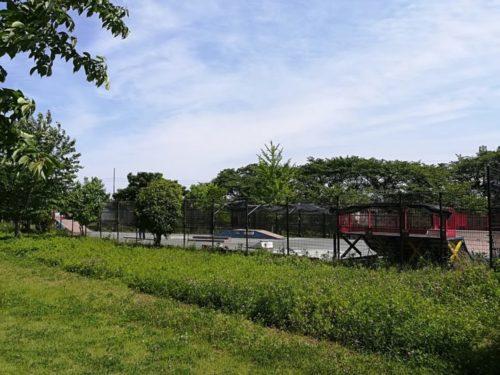 北緑地公園4