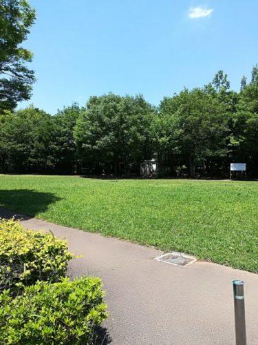 若葉台公園5