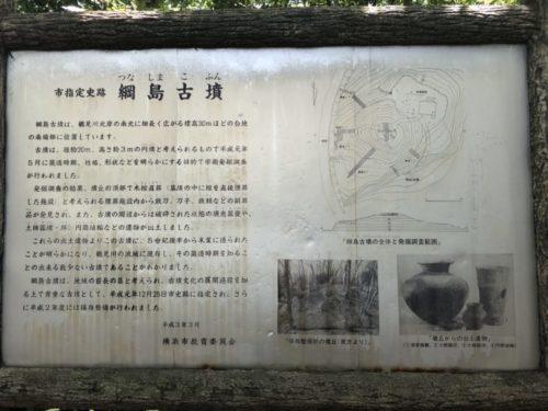 綱島公園7