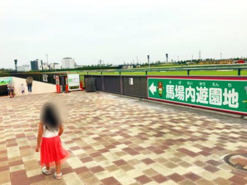 中京競馬場3