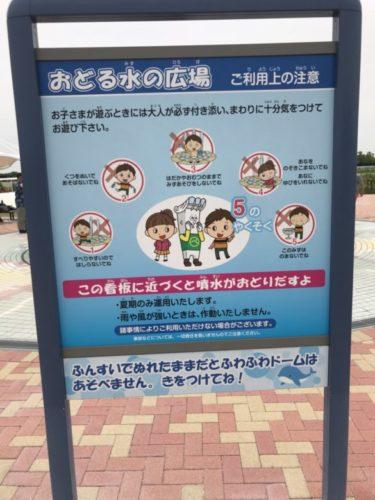 中京競馬場5