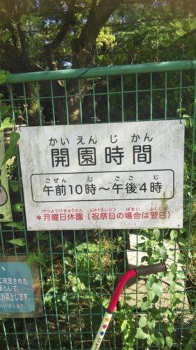大崎公園36