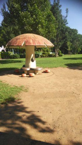 大崎公園9