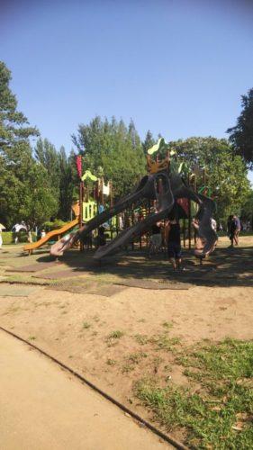 大崎公園11