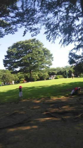 大崎公園19