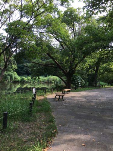 鴨池公園25