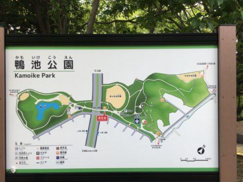 鴨池公園22