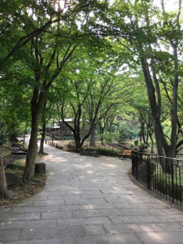 鴨池公園2