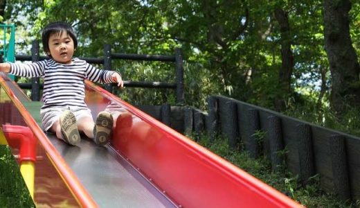 八女市・大牟田市・みやま市のロング・ローラーすべり台がある公園3選
